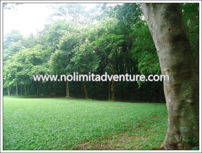 Outbound Training di Kebun Raya Purwodadi