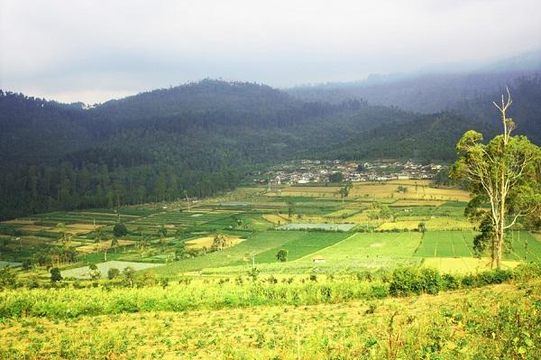 Pesona Alam Pujon Kidul