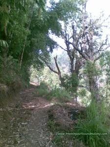 trek menuju Coban Manten