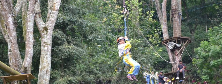 outbound flying fox (3)