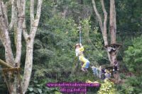 Outbound Flying Fox