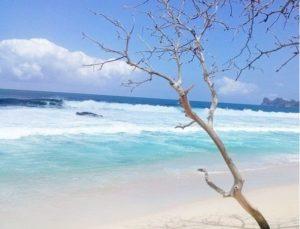 Pantai Sendiki, Pesona Tersembunyi Di Malang Selatan
